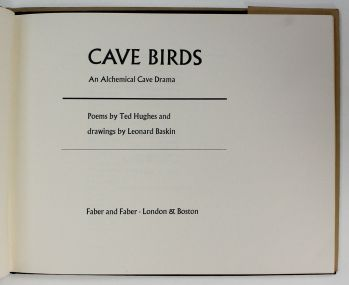 CAVE BIRDS -  image 2