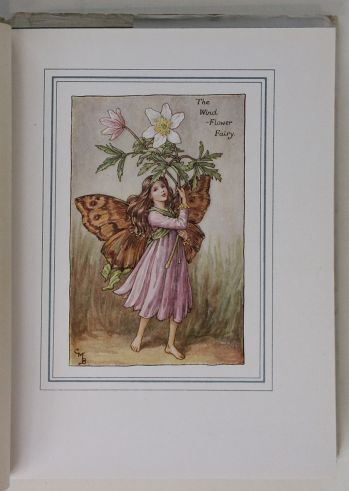 THE BOOK OF THE FLOWER FAIRIES. -  image 4