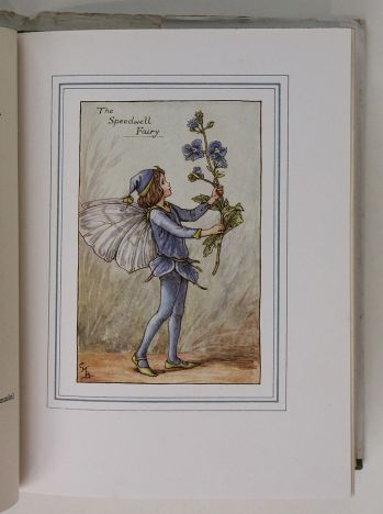 THE BOOK OF THE FLOWER FAIRIES. -  image 5