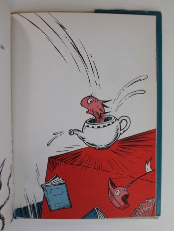 THE CAT IN THE HAT -  image 8