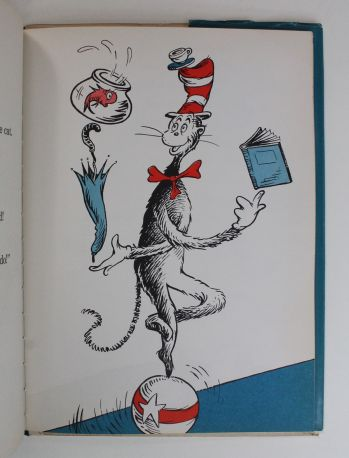 THE CAT IN THE HAT -  image 9