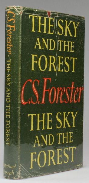 THE SKY AND THE FOREST -  image 1