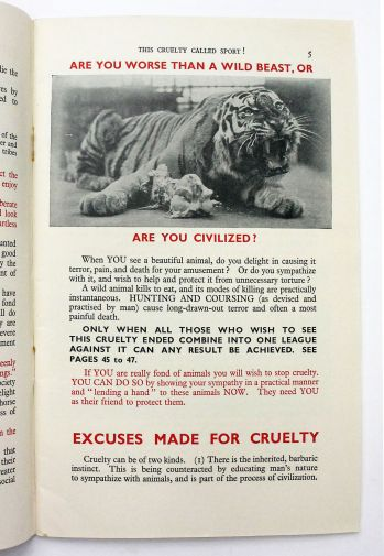 THIS CRUELTY CALLED SPORT! -  image 3