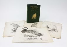 BIRDS OF THE BRITISH ISLES [WITH FOUR ORIGINAL DRAWINGS]