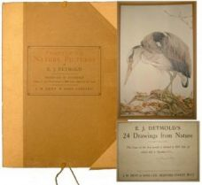 TWENTY FOUR NATURE PICTURES BY E.J.DETMOLD.
